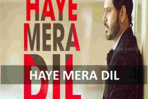 CHORDS OF HAYE MERA DIL