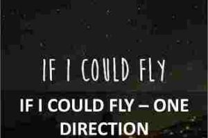 CHORDS OF IF I COULD FLY
