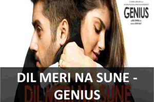 CHORDS OF DIL MERI NA SUNE