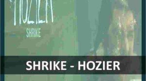 CHORDS OF SHRIKE