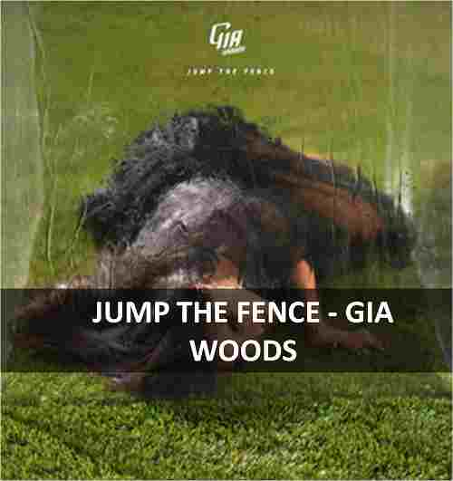CHORDS OF JUMP THE FENCE